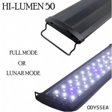 BEAMWORKS HI-LUMEN 60 LED(60CM)(0.5W)